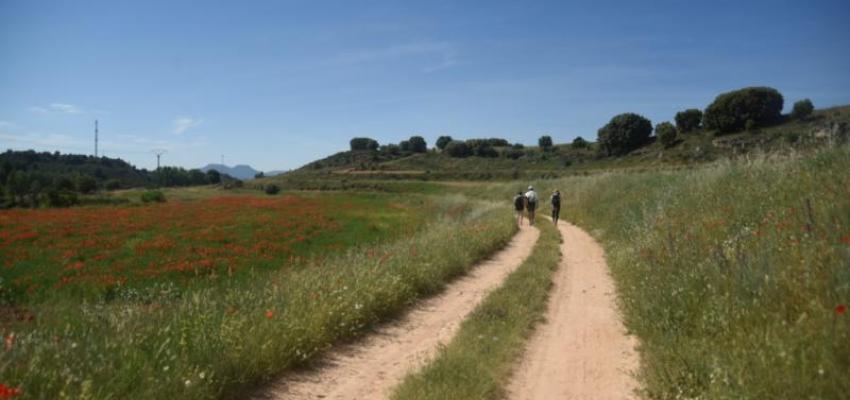La Diputación y la CEOE organizan un viaje a La Alcarria para medios especializados en turismo